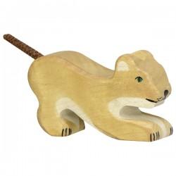 Lion, petit, jouant